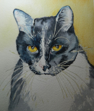 Kitty Love 2